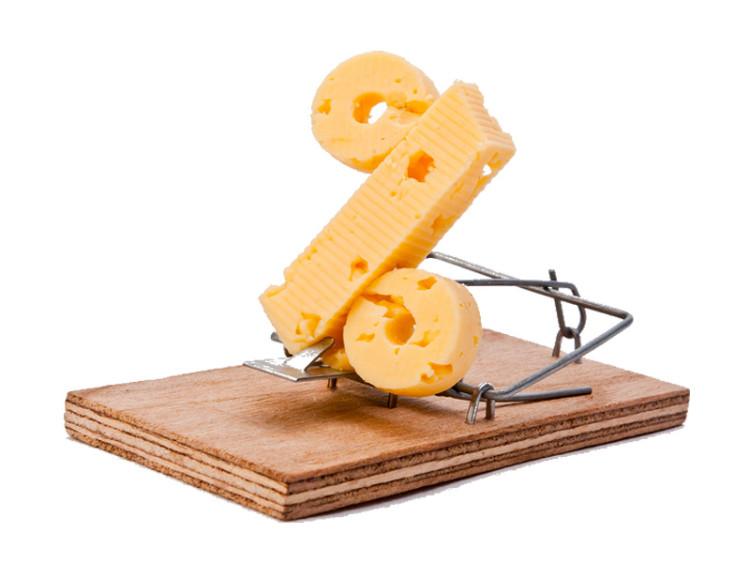 money_cheese